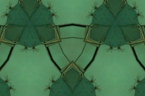 kaleidoskop-0151